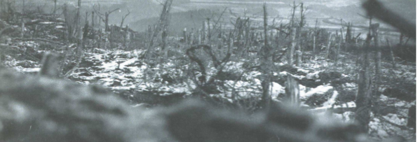 Parution : Louis Chevrier de Corcelles un témoin et un intellectuel dans la Grande Guerre dans les Vosges